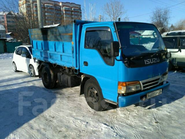 дром в амурской области грузовики резус-конфликта