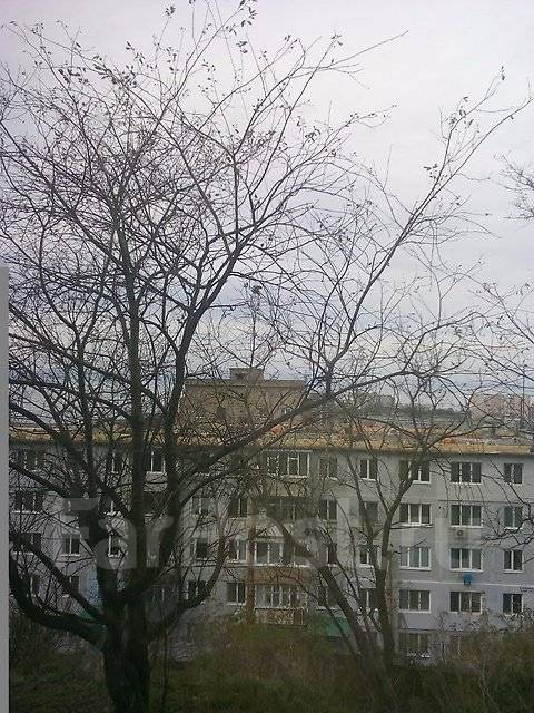 3-комнатная, улица Нерчинская 42. Центр, агентство, 61 кв.м. Вид из окна днём
