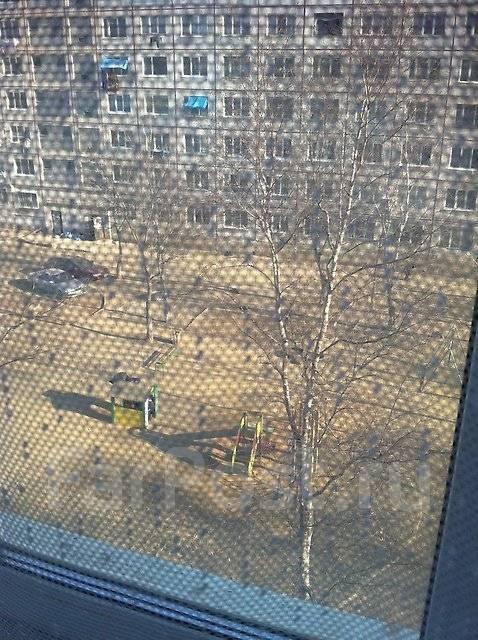 2-комнатная, улица Бабушкина 4/1. Бабушкина , частное лицо, 45 кв.м. Вид из окна днем