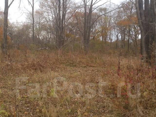Продам земельный участок в п. Трудовое, Ж-4, аренда 49 лет. 1 000 кв.м., аренда, от частного лица (собственник)