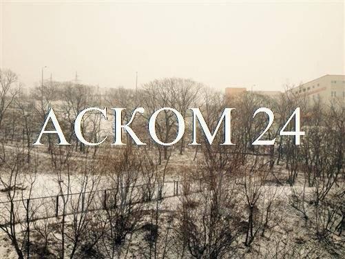 3-комнатная, улица Новожилова 33. Борисенко, агентство, 62 кв.м. Вид из окна днём
