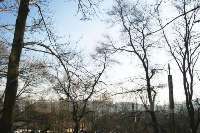 2-комнатная, улица Светланская 173. Центр, проверенное агентство, 46 кв.м. Вид из окна днём