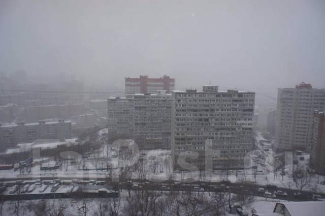 1-комнатная, улица Аллилуева 12а. Третья рабочая, агентство, 37 кв.м. Вид из окна днём