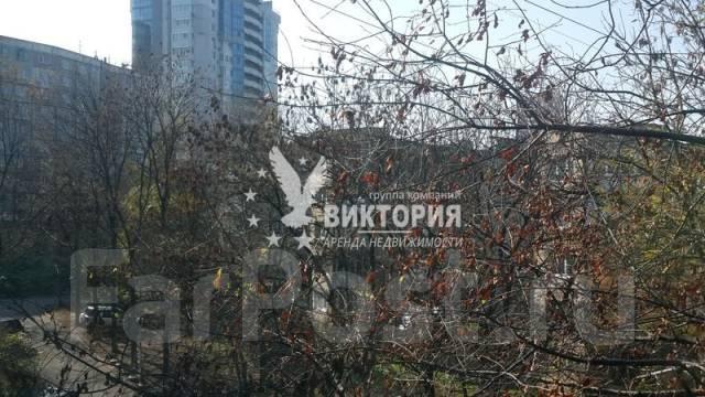 1-комнатная, улица Некрасовская 96/4. Некрасовская, агентство, 35 кв.м. Вид из окна днем