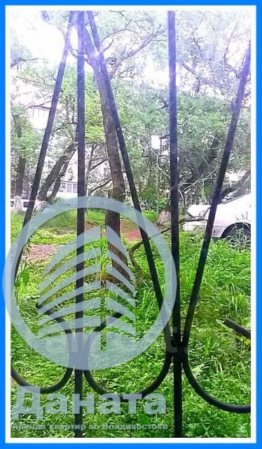 Гостинка, улица Черемуховая 14. Чуркин, агентство, 20 кв.м. Вид из окна днем