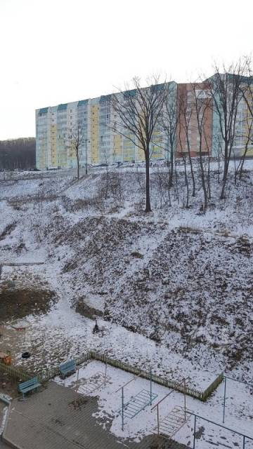 2-комнатная, улица Анны Щетининой 35. Снеговая падь, агентство, 54 кв.м. Вид из окна днём