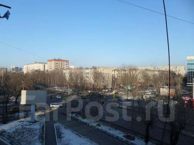 3-комнатная, улица Некрасова 49. Центр города, агентство, 58 кв.м. Вид из окна днём