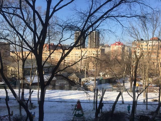 2-комнатная, улица Башидзе 10. Первая речка, агентство, 43 кв.м. Вид из окна днем