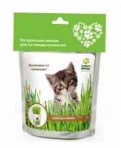 Happy Plant Трава для кошек