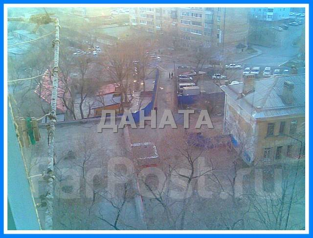 Гостинка, переулок Днепровский 4. Столетие, агентство, 24 кв.м. Вид из окна днем