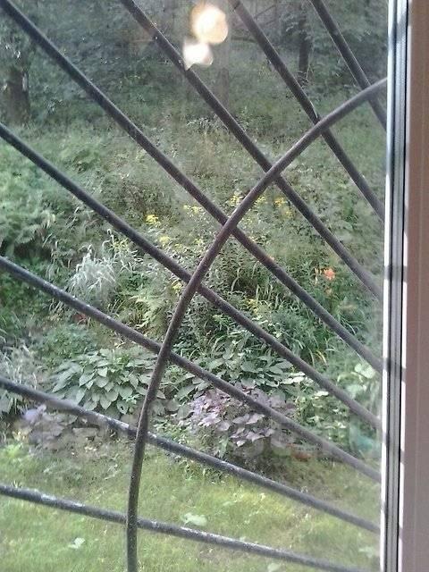 1-комнатная, улица Интернациональная 71. Чуркин, проверенное агентство, 33 кв.м. Вид из окна днём