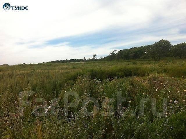 Продается земельный участок с видом на море в п. Тавричанка. 1 500 кв.м., собственность, электричество, от агентства недвижимости (посредник). Фото у...
