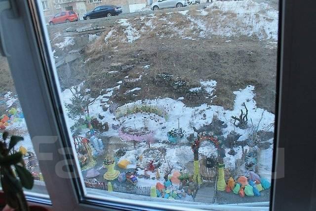 Гостинка, проспект Красного Знамени 133/2. Третья рабочая, агентство, 24 кв.м. Вид из окна днём