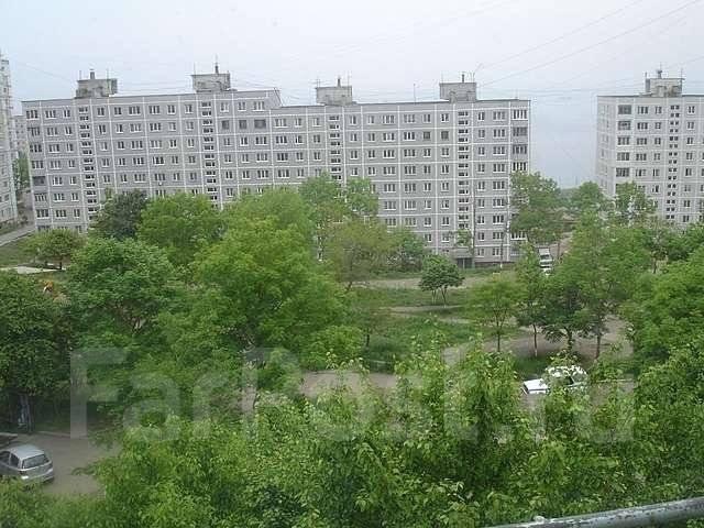 1-комнатная, улица Волкова 3. Тихая, агентство, 29 кв.м. Вид из окна днём