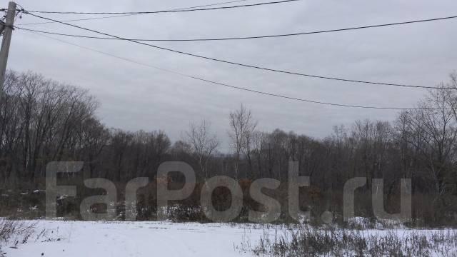 Продам земельный участок в с. Владимиро-Александровское. 1 500 кв.м., аренда, электричество, от частного лица (собственник). Фото участка