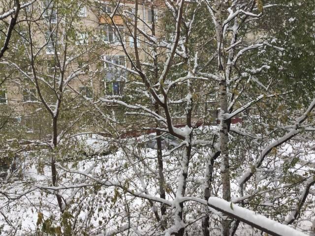 2-комнатная, улица Дикопольцева 72. Центральный, частное лицо, 45 кв.м.