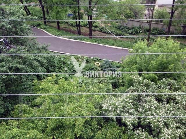 Гостинка, улица Некрасовская 48. Некрасовская, агентство, 24 кв.м. Вид из окна днем