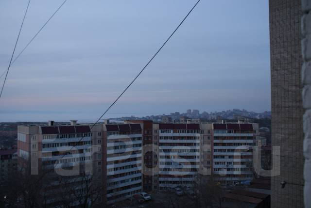 2-комнатная, улица Днепровская 22. Столетие, частное лицо, 36 кв.м. Вид из окна днём