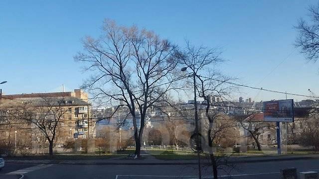 3-комнатная, улица Бестужева 15а. Эгершельд, агентство, 63 кв.м. Вид из окна днём