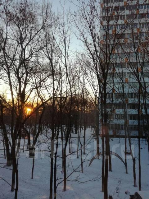 3-комнатная, улица Русская 52. Вторая речка, частное лицо, 58 кв.м. Вид из окна днём