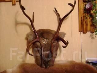 Продам настенное панно северного оленя