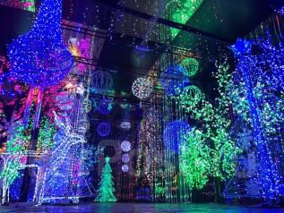 LED, Светодиоды, Гирлянды, Снежинки, Шары, Деревья, Дожди, Сетки, Бахрома,