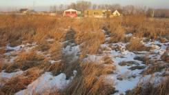 Земельный участок с. Сосновка, ИЖС. 1 500 кв.м., собственность, аренда, электричество, вода, от частного лица (собственник). Фото участка