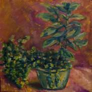 Картина. растение в горшке