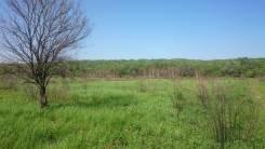 Продам участок из земель с/х назначения (пашня) в с. Тарасовка. 43 320 кв.м., собственность, вода, от частного лица (собственник). Фото участка