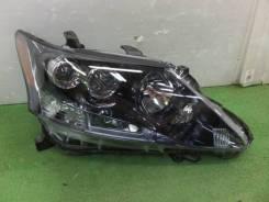 Фары Фара Lexus HS250H ANF10