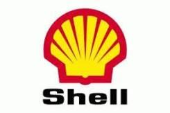 Shell. синтетическое