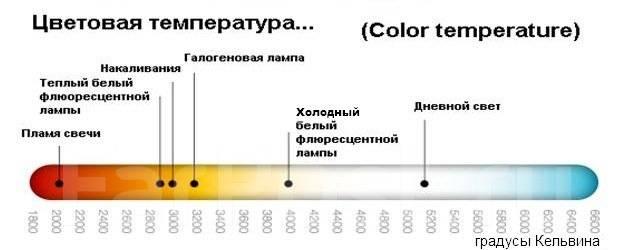 Лампа галогенная. Lexus: HS250h, CT200h, ES300h, RX450h, ES250, IS300, RX270, ES200, GS250, IS200t, IS F, IS350C, IS250, GS450h, IS200d, LX570, IS300h...