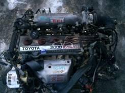 Двигатель. Toyota Master Toyota Camry, SV35 Двигатель 3SFE. Под заказ