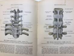 Атлас анатомии человека 1938. Оригинал