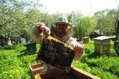 Внимание пчеловодов!