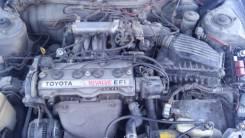 Амортизатор. Toyota: Corolla, Corolla Levin, Carina, Sprinter, Celica, Sprinter Trueno, Corona, Carina II, Sprinter Marino, Corona Exiv, Carina ED, Co...