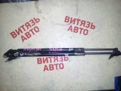 Амортизатор крышки багажника. Toyota Ipsum, SXM10, SXM15