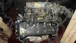 Двигатель в сборе. Nissan: Wingroad, Avenir, Primera Camino, Bluebird, AD, Tino Двигатель QG18DE. Под заказ