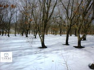 Продаётся земельный участок в пос. Тавричанка. 1 500 кв.м., собственность, от агентства недвижимости (посредник). Фото участка