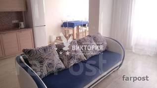 1-комнатная, улица Комсомольская 25б. Первая речка, агентство, 42 кв.м.