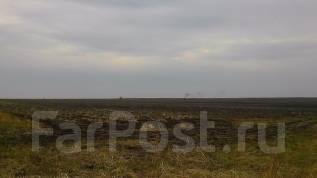 Земельный участок 22га в Михайловском районе. 220 000 кв.м., собственность, от частного лица (собственник). Фото участка
