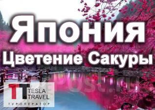 Япония. Токио. Экскурсионный тур. Цветение Сакуры! Бесплатный трансфер в аэропорт