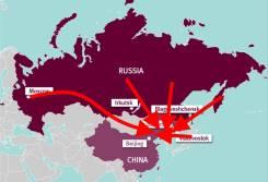 Экспорт товара в Китай