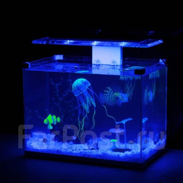 Розовая медуза 1366x768px - Компьютерная графика - Интернет портал ... | 640x640