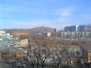 1-комнатная, проспект Народный 27. Некрасовская, частное лицо, 21 кв.м. Вид из окна днём