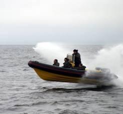 Продам риб RX-600. Год: 2016 год, длина 6,00м., двигатель подвесной, 275,00л.с., бензин