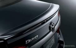 Спойлер. Toyota Camry, ASV51, ACV51, AVV50, ASV50