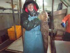 Матрос-рыбообработчик. Среднее образование, опыт работы 3 года