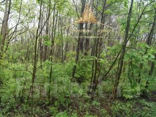 Земельный участок в районе Синей Сопки с/т Дубок. 1 000 кв.м., собственность, от агентства недвижимости (посредник). Фото участка