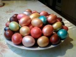 Яйцо куриное. Под заказ